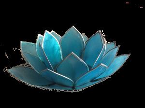 blauwe lotus Umoya Health massage