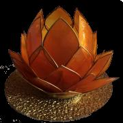 gouden lotus Umoya Health massage